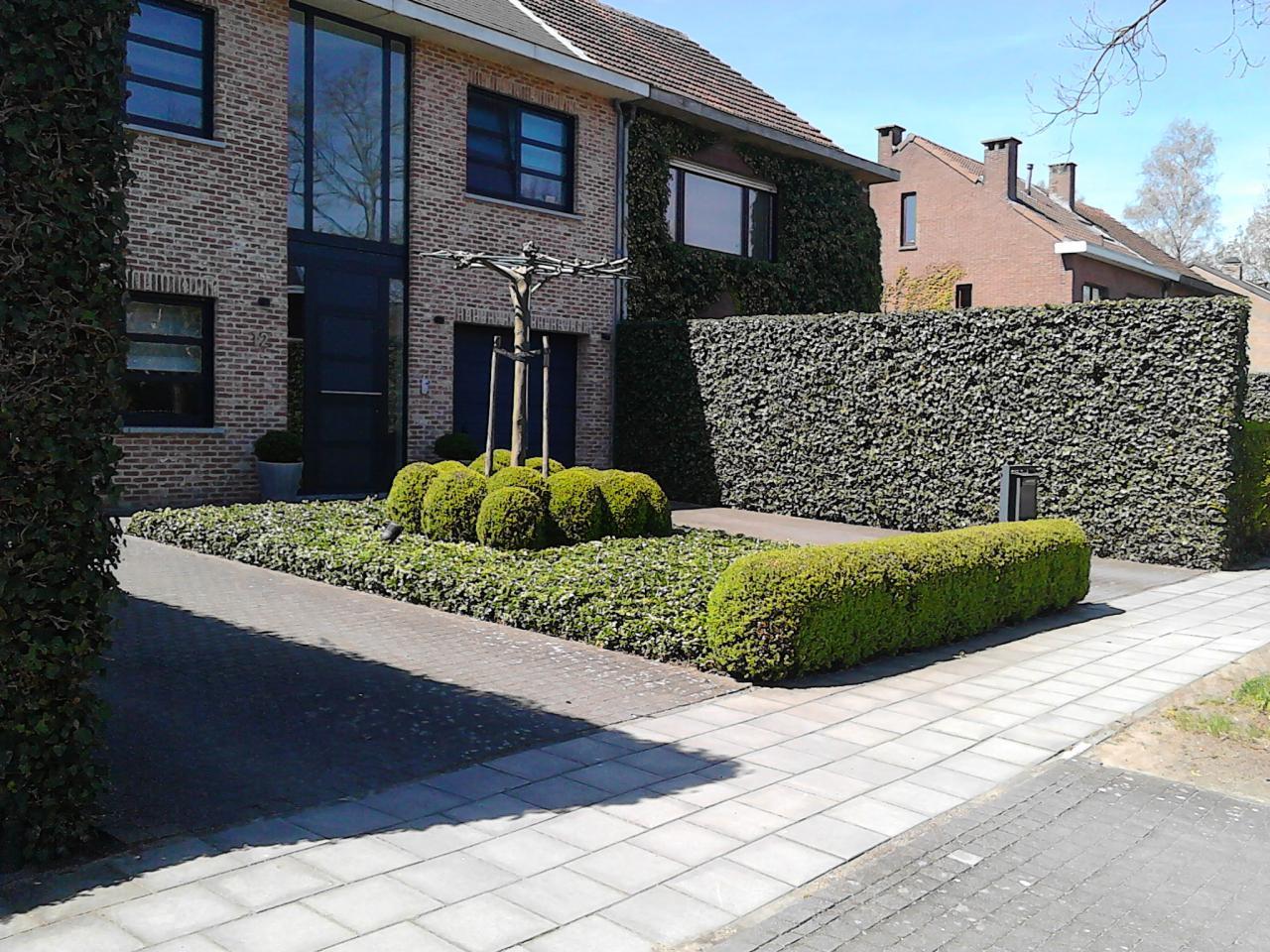 Uw tuin ontwerpen renoveren of aanleggen in antwerpen for Tuin renoveren